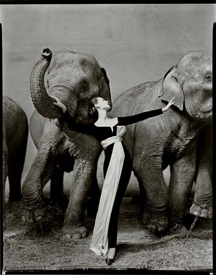 Richard Avedon, Dovima with Elephants, Evening Dress by Dior, Cirque d'Hiver, Paris 1955, Silver Gelatin Print