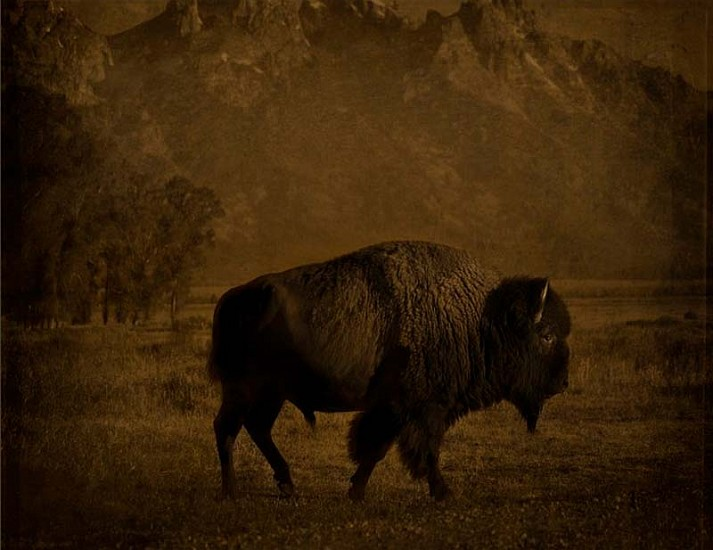 Jack Spencer, Buffalo/Tetons, Wyoming 2007, Archival Pigment Print with Mixed Media Glaze
