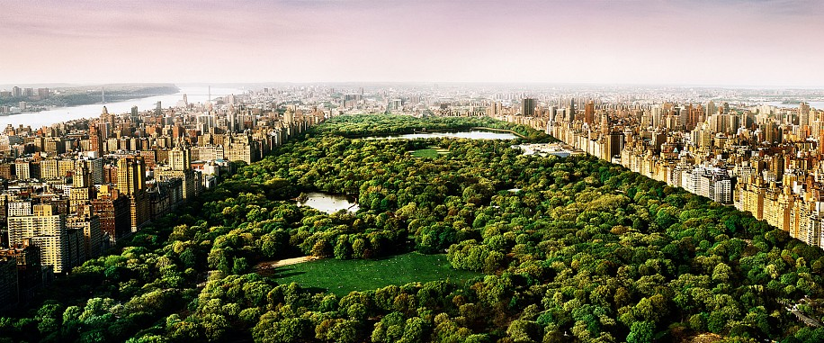David Drebin, Dreams of Central Park 2012, Digital C Print